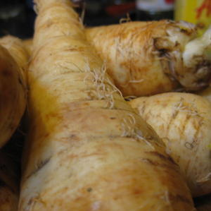 Parsnips about to be roasted and pureed